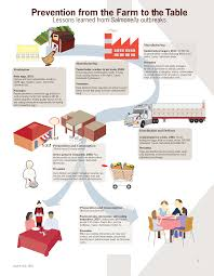 from farm to table file prevention of salmonella from the farm to table infographic png