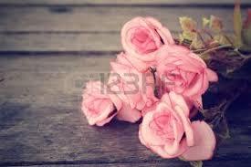 imagenes de rosas vintage rosas vintage imágenes de archivo vectores rosas vintage fotos