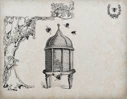 a brief history of bees