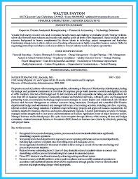 executive summary resume example cool credit analyst resume example from professional how to cool credit analyst resume example from professional image name