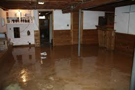 Painted Concrete Basement Floor by Astounding Design Painting Concrete Basement Floor Ideas