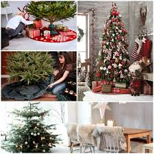 Decorated Christmas Trees Buy by Christmas Trees Decorating And Caring Hum Ideas