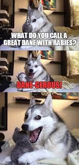 Great Dane Meme - dog puns imgflip