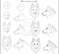 wolf face coloring page best 25 how to draw wolf ideas on pinterest how to draw dogs