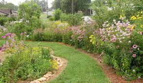 plants native to arkansas kill your lawn audubon arkansas