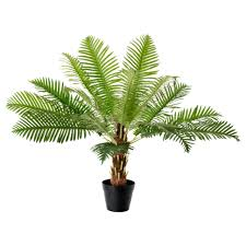 door artificial indoor plants door fejka potted plant fern palm
