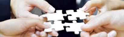 Seeking Commercial Seeking Commercial Partners Sciteex