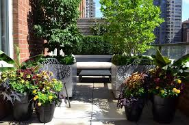 gardening ideas for small balcony landscape traditional with black