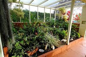 outdoor lanai our green atrium garden on the outdoor lanai picture of ku au inn