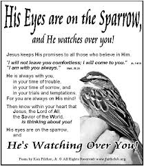 19 best his eye is on the sparrow images on feelings