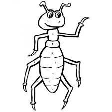 free printable ant animal coloring pages for toddlers
