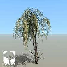peppermint willow species pack speedtree