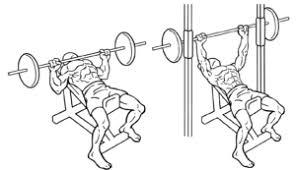 Flat Bench Press Dumbbell Muscle Building Program I Markymarks Fitness
