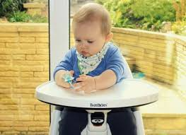 Babybjorn Potty Chair Reviews Baby Bjorn Booster Chair Review Hastac 2011