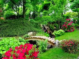 beautiful nature flowers garden mojmalnews com