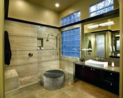 master bathroom ideas houzz houzz small master bathrooms medium size of bathroom remodel