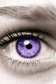 purple eye color 66 best gorgeous eyes images on pinterest beauty makeup