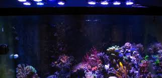 led reef lighting reviews wifi controlled aquarium led lighting for 165w aquatic joy