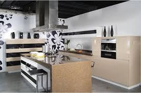 kitchen cabinet rome castle