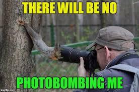Dead Squirrel Meme - dead memes week jehovah witness squirrel imgflip