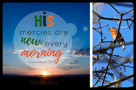 start morning prayer by praising the lord with thanksgiving thrive