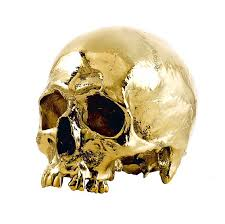 dipped in gold gilding the carnivore human and animal skulls dipped in 24kt gold