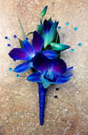 blue orchid corsage image result for blue orchid wedding planning