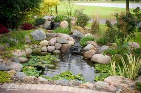 koi ponds ecosystem ponds backyard pond designs aquascape