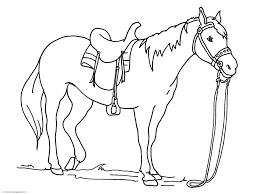 horse color pages snapsite me