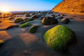 wood state ventura ca california beaches