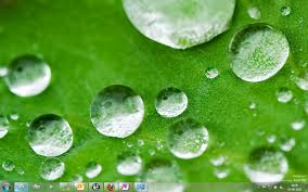 theme pictures nature theme for windows 7