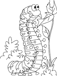 free printable caterpillar coloring pages for kids inside glum me