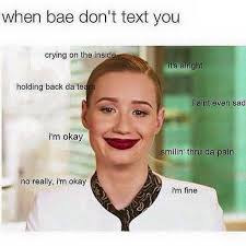 No Text Back Meme - when bae don t text you