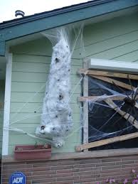 Decorative Spiders Best 25 Giant Spider Ideas On Pinterest Large Spiders Giant
