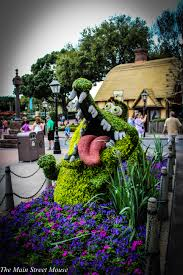 Mickey Mouse Topiary Highlights Of Epcot U0027s International Flower And Garden Festival 2016