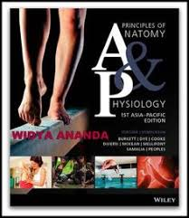 Principles Of Anatomy And Physiology 13th Edition Tortora Principles Of Anatomy And Physiology 14e With Atlas Of The