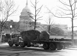 file flickr uscapitol u s capitol christmas tree 1964 1