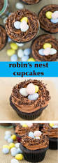 robin u0027s nest cupcakes easy chocolate cupcakes for spring u0026 easter