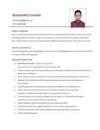 Resume Retail Sales Retail Sales Resume Resume For Retail Sales Associate 1 Jpg 5