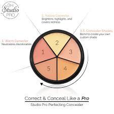 studio pro perfecting concealer kit bh cosmetics
