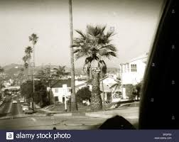 Clinton Houses Clinton Street City Scape Palm Trees Los Angeles California 1960s