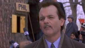 Bill Murray Groundhog Day Meme - groundhog day