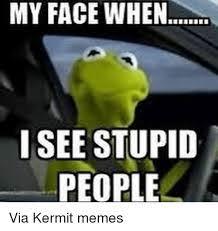 Funny Kermit Memes - 1000 good morning memes funny kermit memes monday gm memes