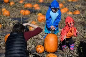 halloween city colorado springs colorado pumpkin patches and corn mazes 2016