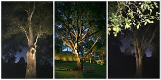 Tree Lights Landscape by Blog Outdoor Lighting Perspectives