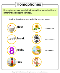 look at picture and write the homophone worksheet turtle diary