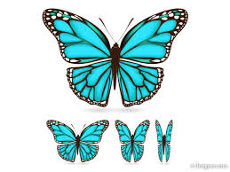logos for butterfly wing designs crafts