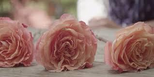 preserve flowers 5 creative ways to preserve funeral flowers bakken funeral