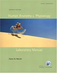 Human Anatomy Physiology Laboratory Manual Pdf 9780321542458 Human Anatomy U0026 Physiology Laboratory Manual Cat