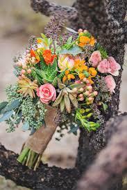Apache Junction Flowers - wild succulents u2014 wild child